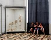 Ringvorlesung Einführung in die Angewandte Kulturwissenschaft: Museum and beyond