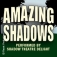 Amazing Shadows performed by Shadow Theatre Delight