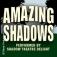 AMAZING SHADOWS - PerformedBy Shadow Theatre Delight