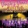 Voulez Vous - The Abba Tribute Concert