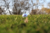 15. NCL-Golf-Trophy