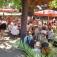 Biergarten Waldkater
