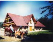 Haflingergestüt Ziegelhof