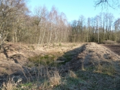 Hamanns Sumpf