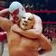 Wrestling in Deutschland