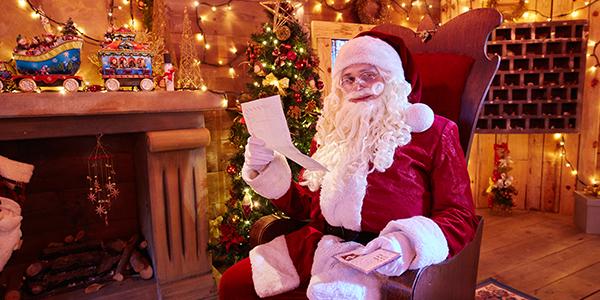 Espectaculos Navidad - Distributiva - El Bosque Encantado