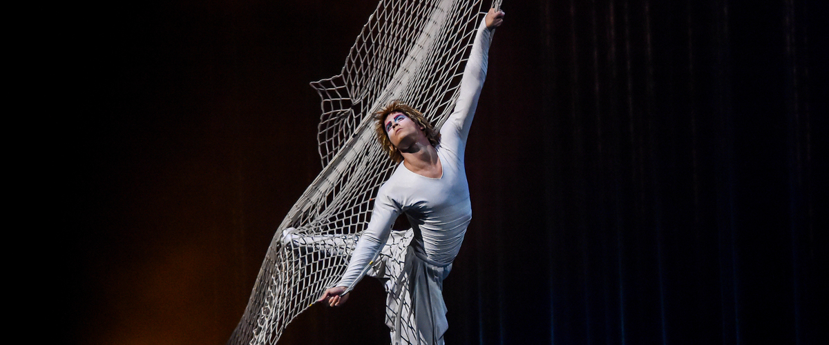 Espectáculos y Música - Cirque du Soleil - Varekai 2