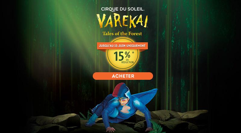 Home - Mosaico - Varekai (FR)