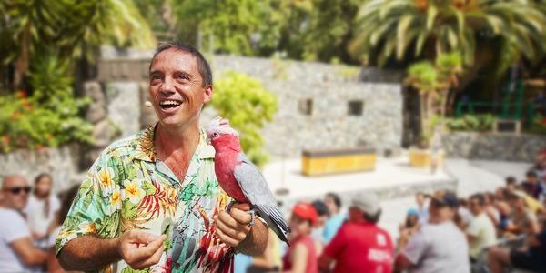 Espectáculos - Aves del Paraíso 2