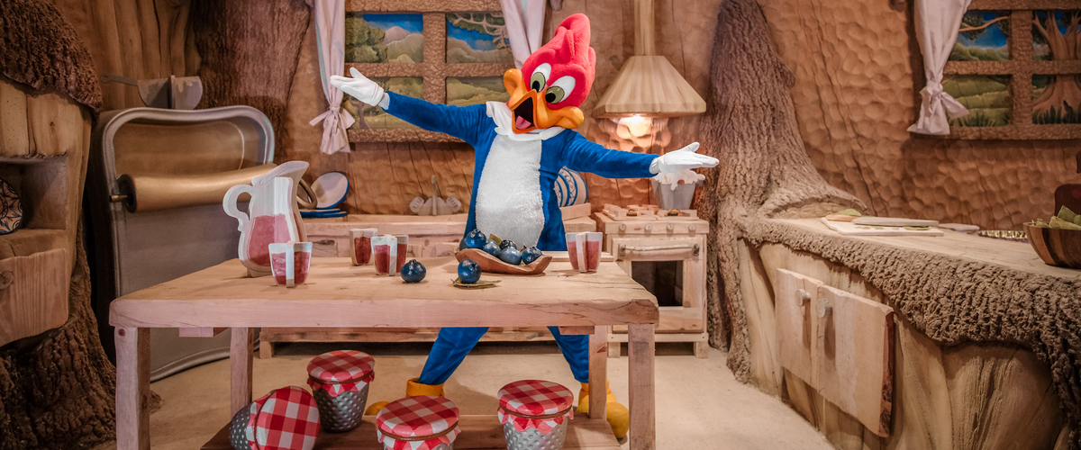 Tiendas Casa Woody