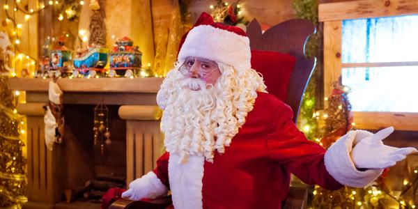 Espectáculo Navidad El Bosque Encantado