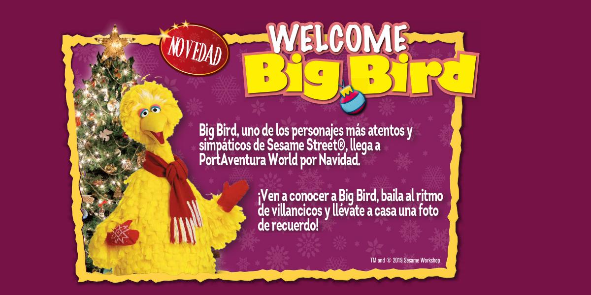 Espectaculo Navidad Big Bird