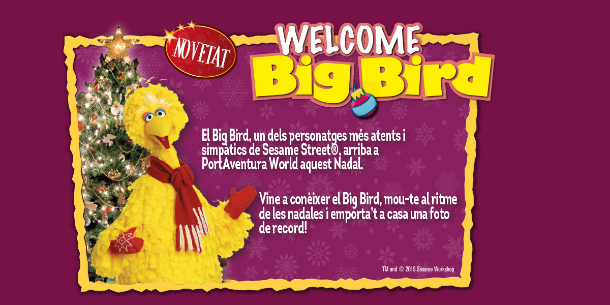 Espectáculo Navidad Big Bird