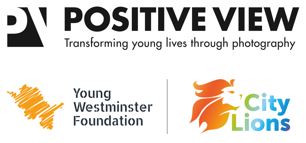 positivie-view-young-westminster-foundation-city-lions.png?mtime=20210113095214#asset:746