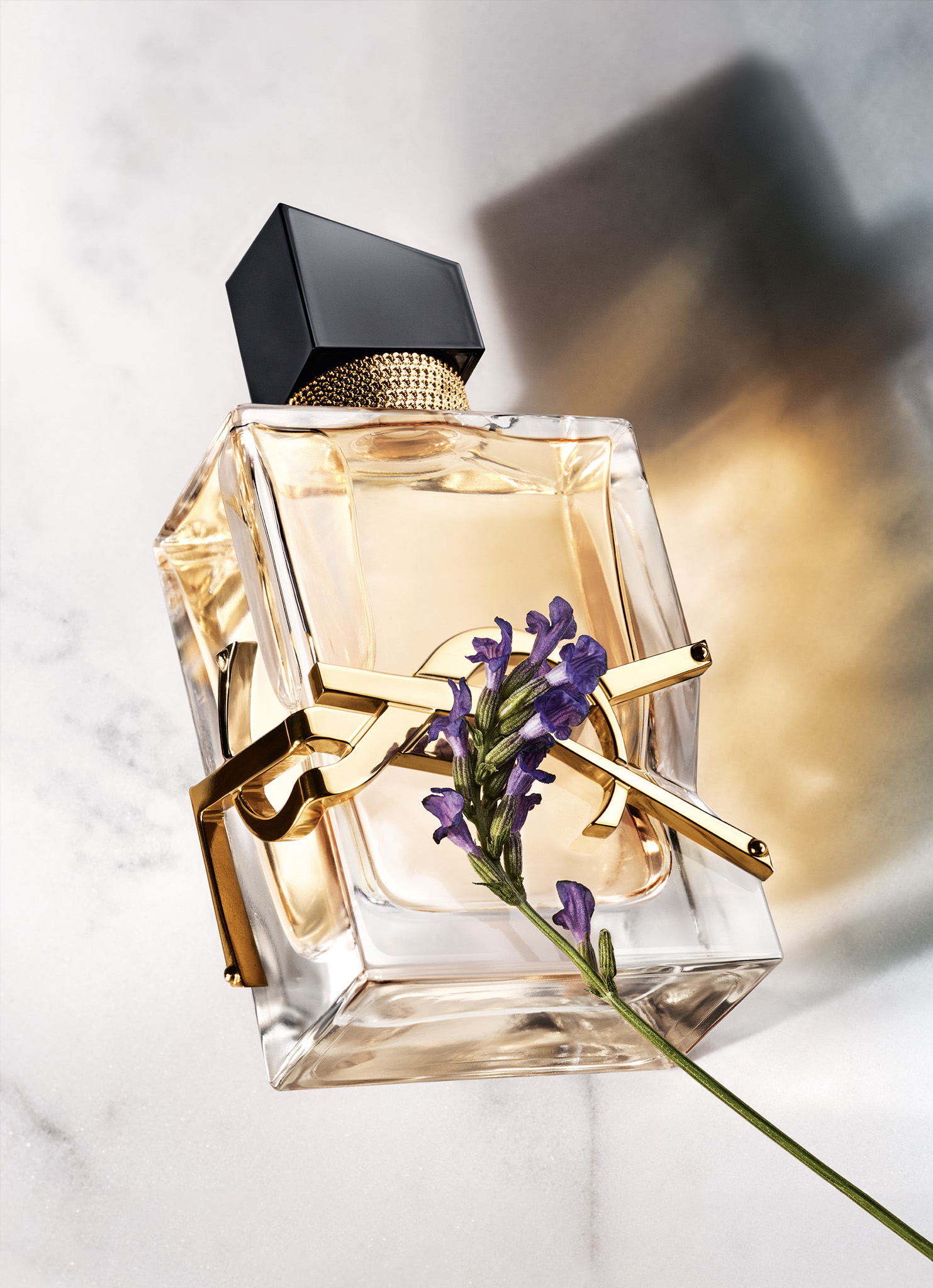 YSL Parfume bottle for brand page featured images.