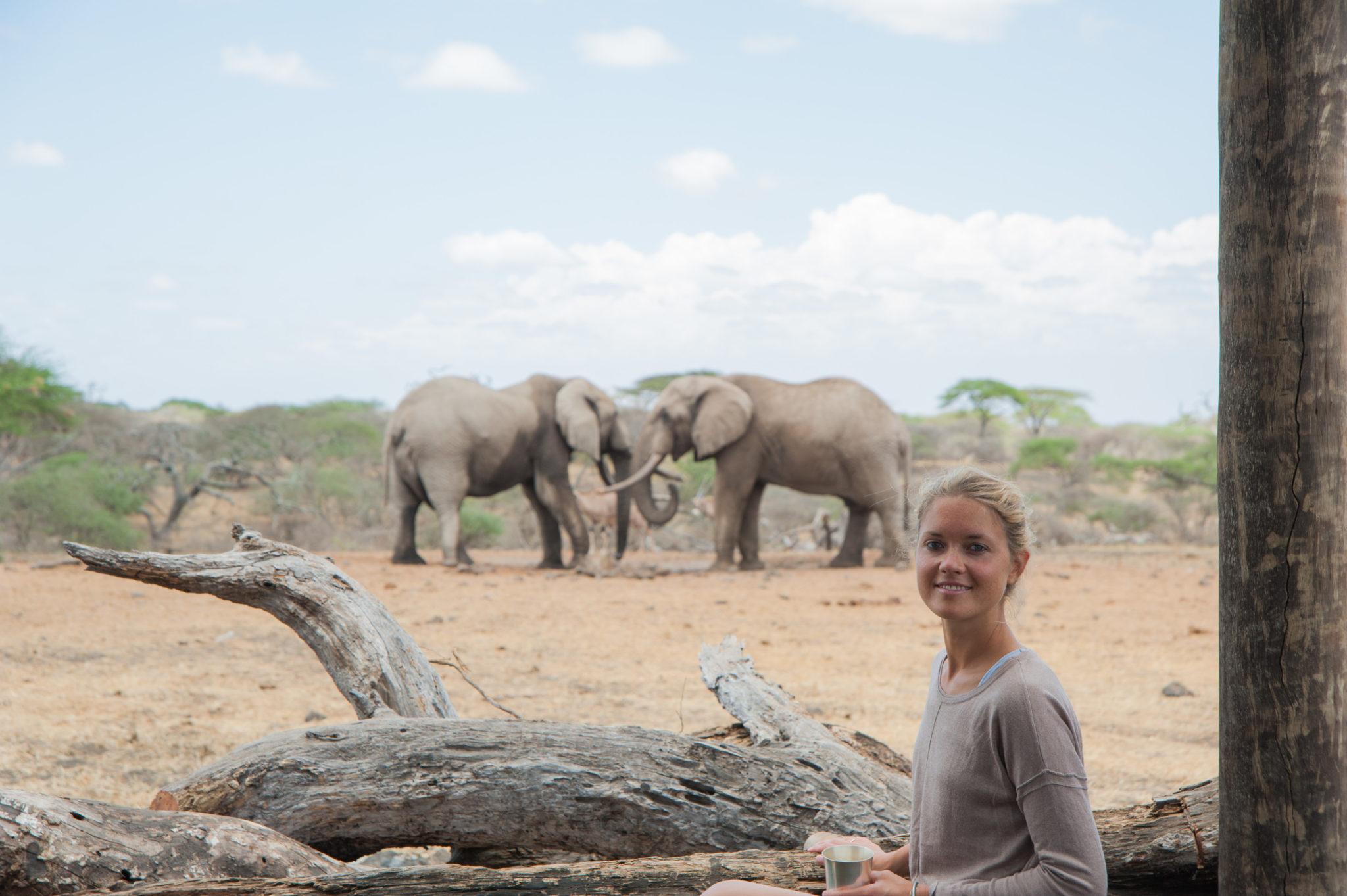 Elephant Gin Tessa-Gerlach