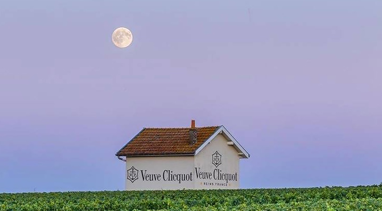 Veuve Clicquot Campaign 3