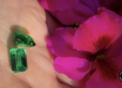 Thesis Gems Collaborates with IEEX Emeralds