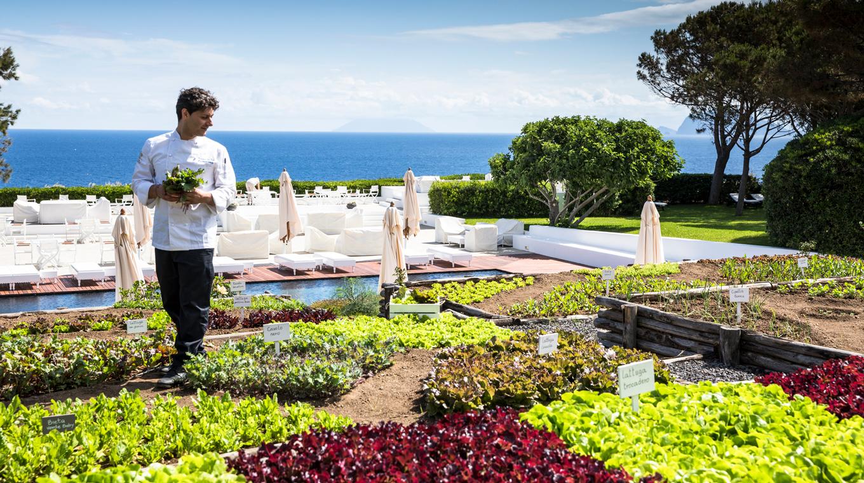 Sicily-organic-gardens–1360