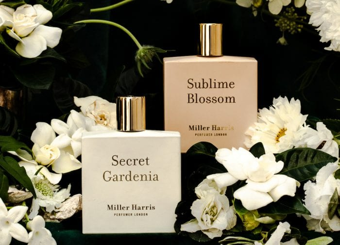 Find your new autumn fragrance