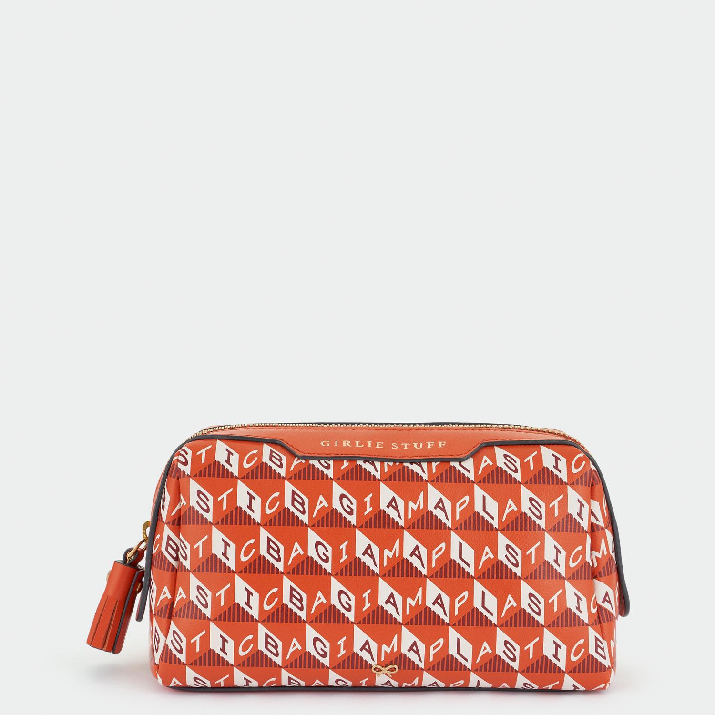 Anya Hindmarch small bag