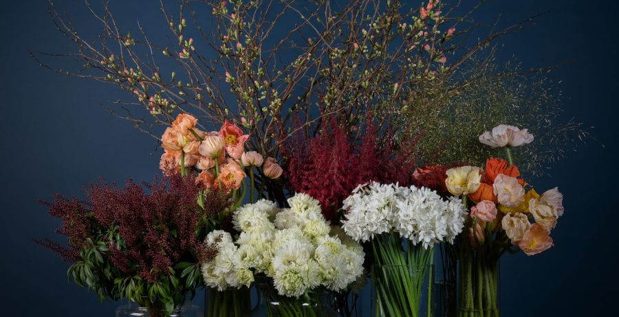 How to choose sustainable flowers for Valentine's Day