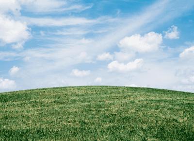 Understanding Carbon – New report coming soon