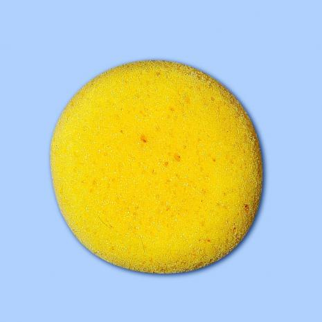 Round Sponge-12 Pack,stockcode:BT-910
