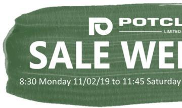 Sale Week February 2019