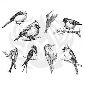 Aviary (Small) Silkscreen, stockcode:DSS-0108