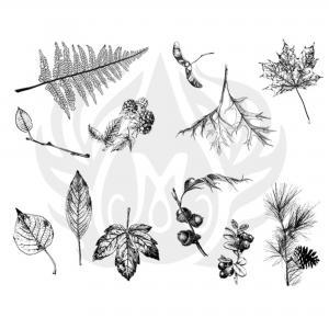 Botanical (Leaves)  Silkscreen, stockcode:DSS-0111