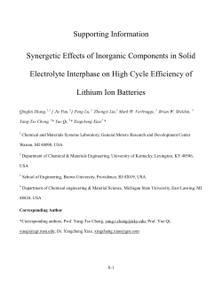 Synergetic Effects of Inorganic Components in Solid