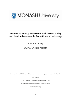 Promoting equity, environmental sustainability and health: frameworks for action and advocacy
