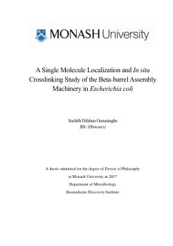 A Single Molecule Localization and In situ  Crosslinking Study of the Beta-barrel Assembly  Machinery in Escherichia coli