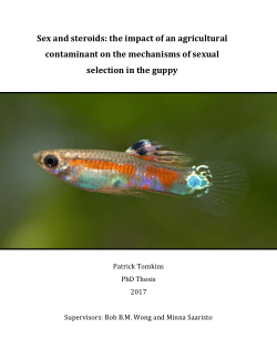 Sex and steroids: the impact of an agricultural contaminant on the mechanisms of sexual selection in the guppy