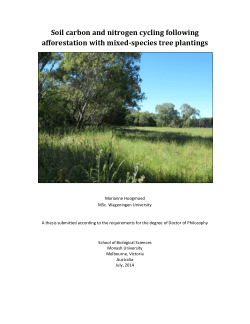 Soil carbon and nitrogen cycling following afforestation with mixed-species tree plantings
