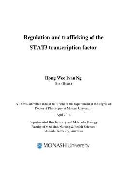 Regulation and trafficking of the STAT3 transcription factor / Hong Wee Ivan Ng