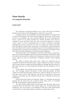 A Custom Essay On Business Ethics Writing Service