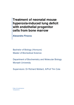 Treatment of neonatal mouse hyperoxia-induced lung deficit with endothelial progenitor cells from bone marrow