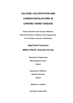 Calcium, calcification and cardiovascular risk in chronic kidney disease / David Nigel Toussaint