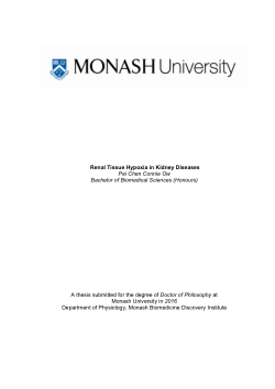 Renal Tissue Hypoxia in Kidney Diseases