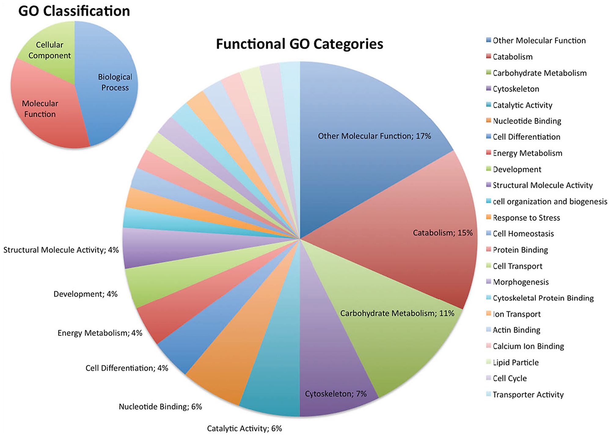 Gene ontology go characterization of potentially dube3a regulated figure3 nvjuhfo Image collections