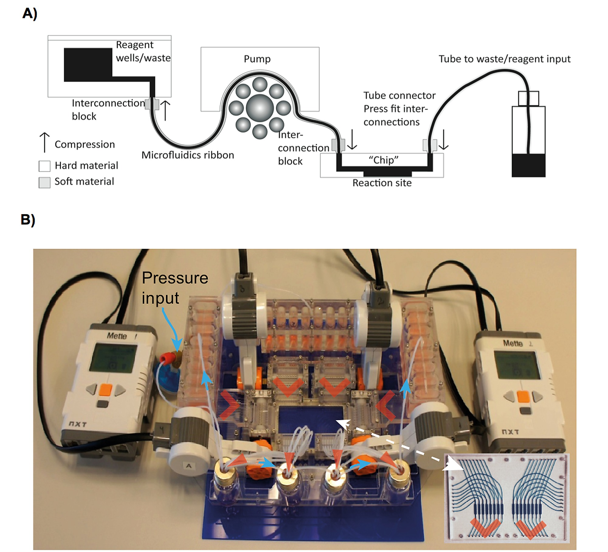 The Role Of Paracrine And Autocrine Signaling In Early Phase House Wiring Simulator Moreover Split Circuit Receptacle Figshare