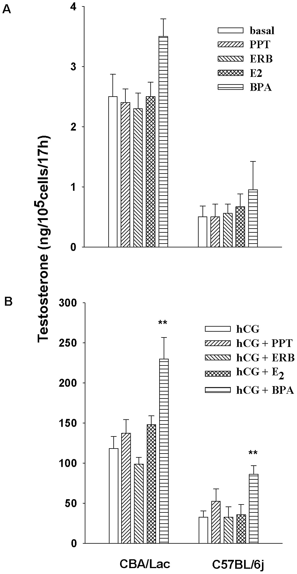 The effect of agonists of estrogen receptors and xenoestrogen BPA on