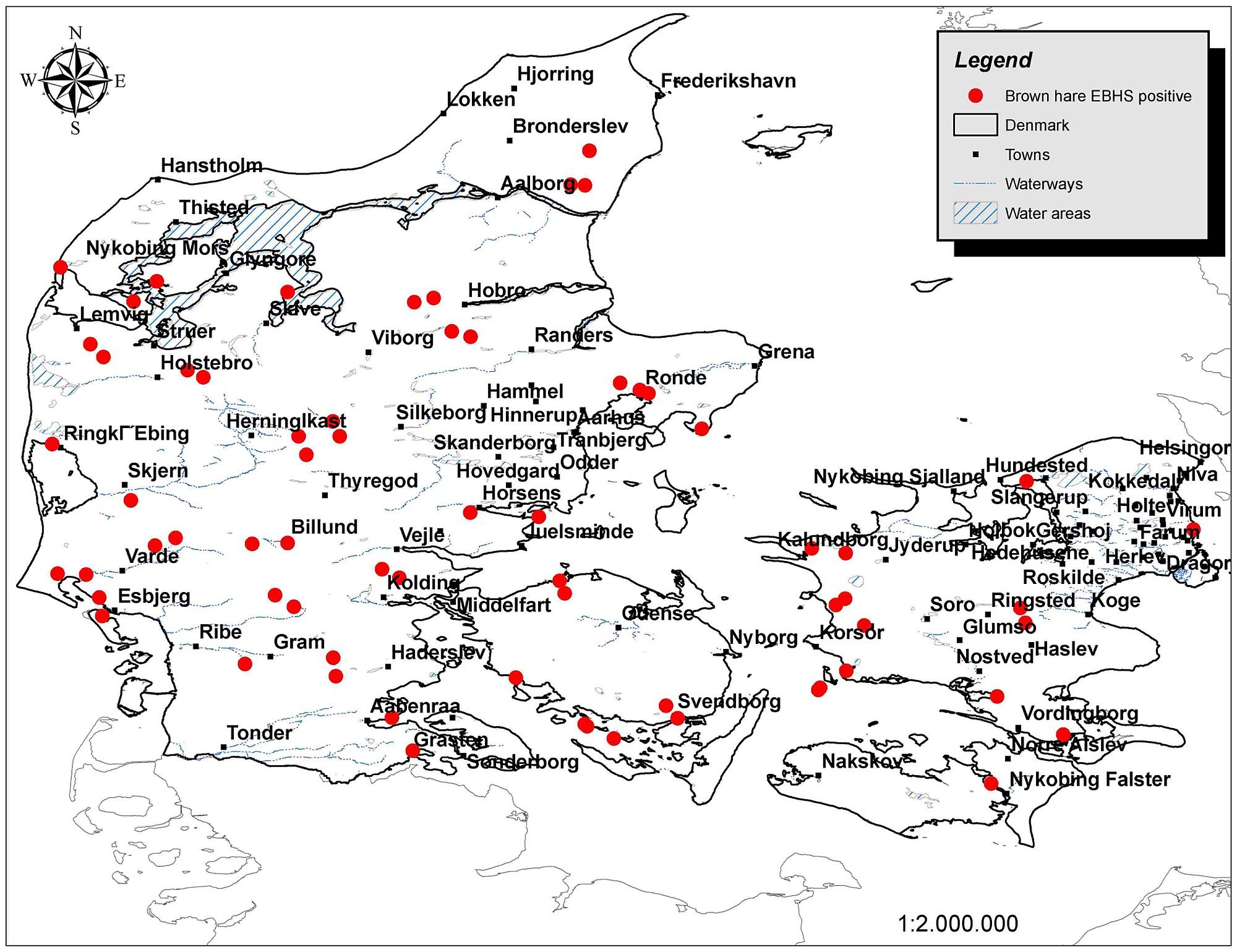 Location map of EBHSV positive Lepus europaeus individuals.