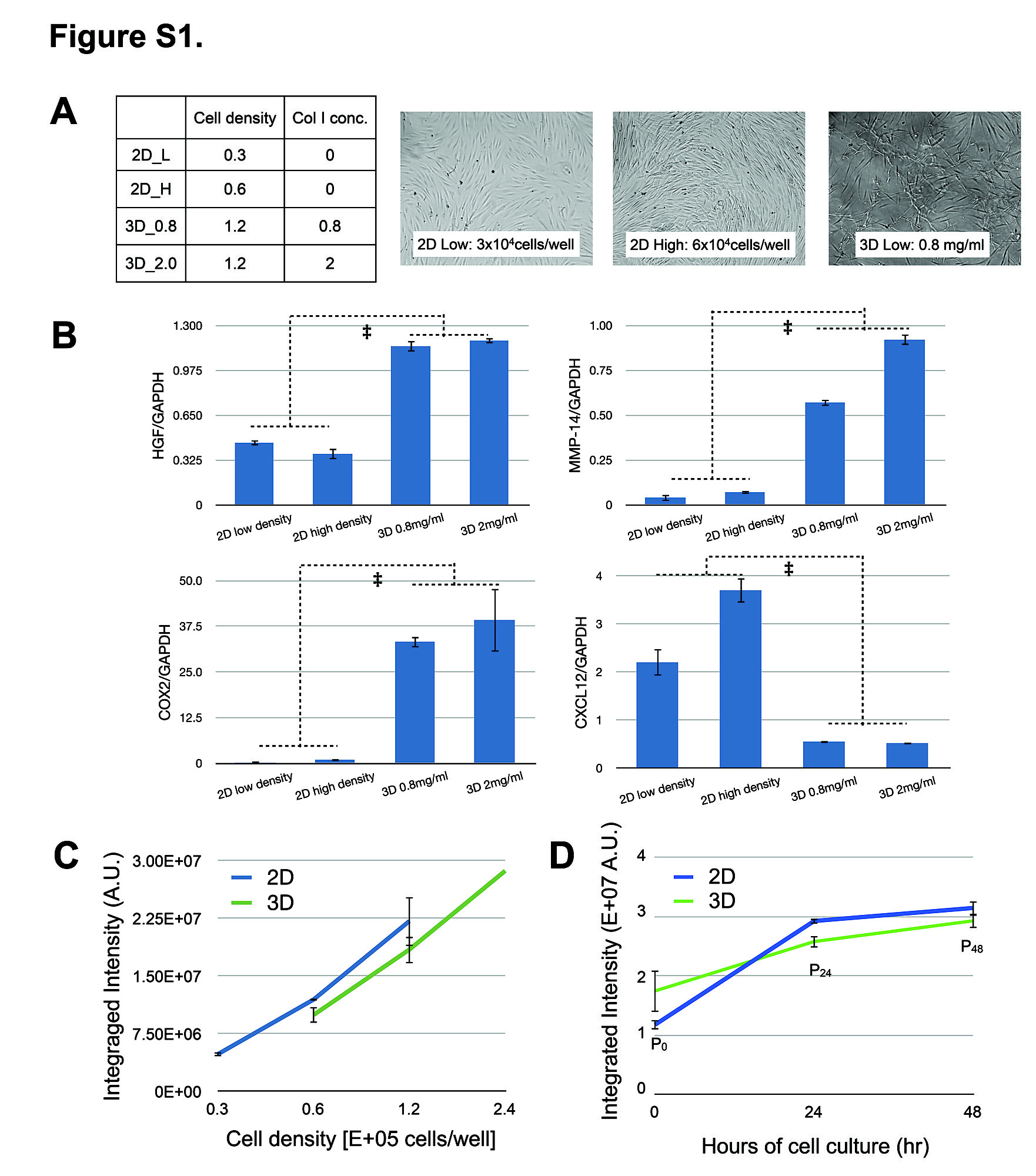 Understanding the Impact of 2D and 3D Fibroblast Cultures on