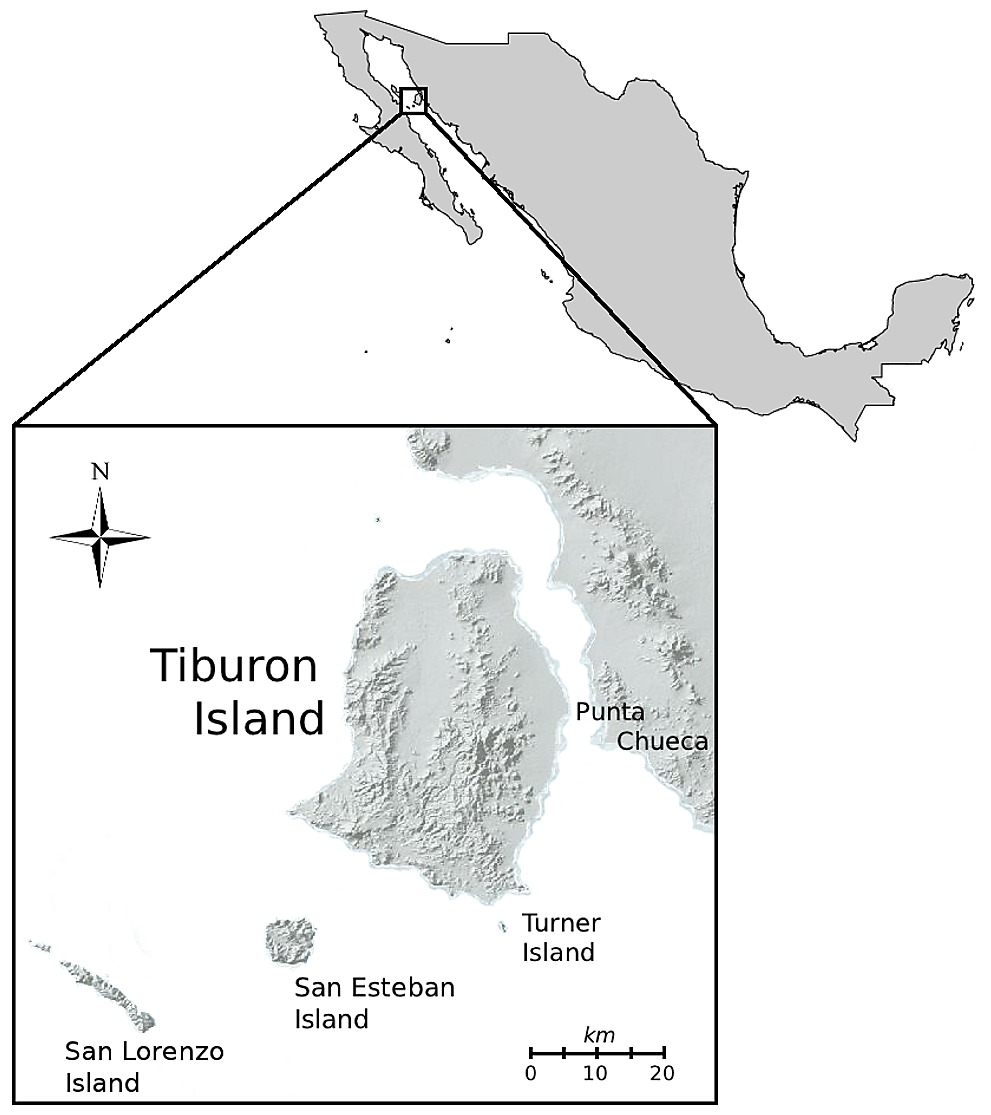 Map Showing The Localization Of Tiburon Island On The Gulf Of