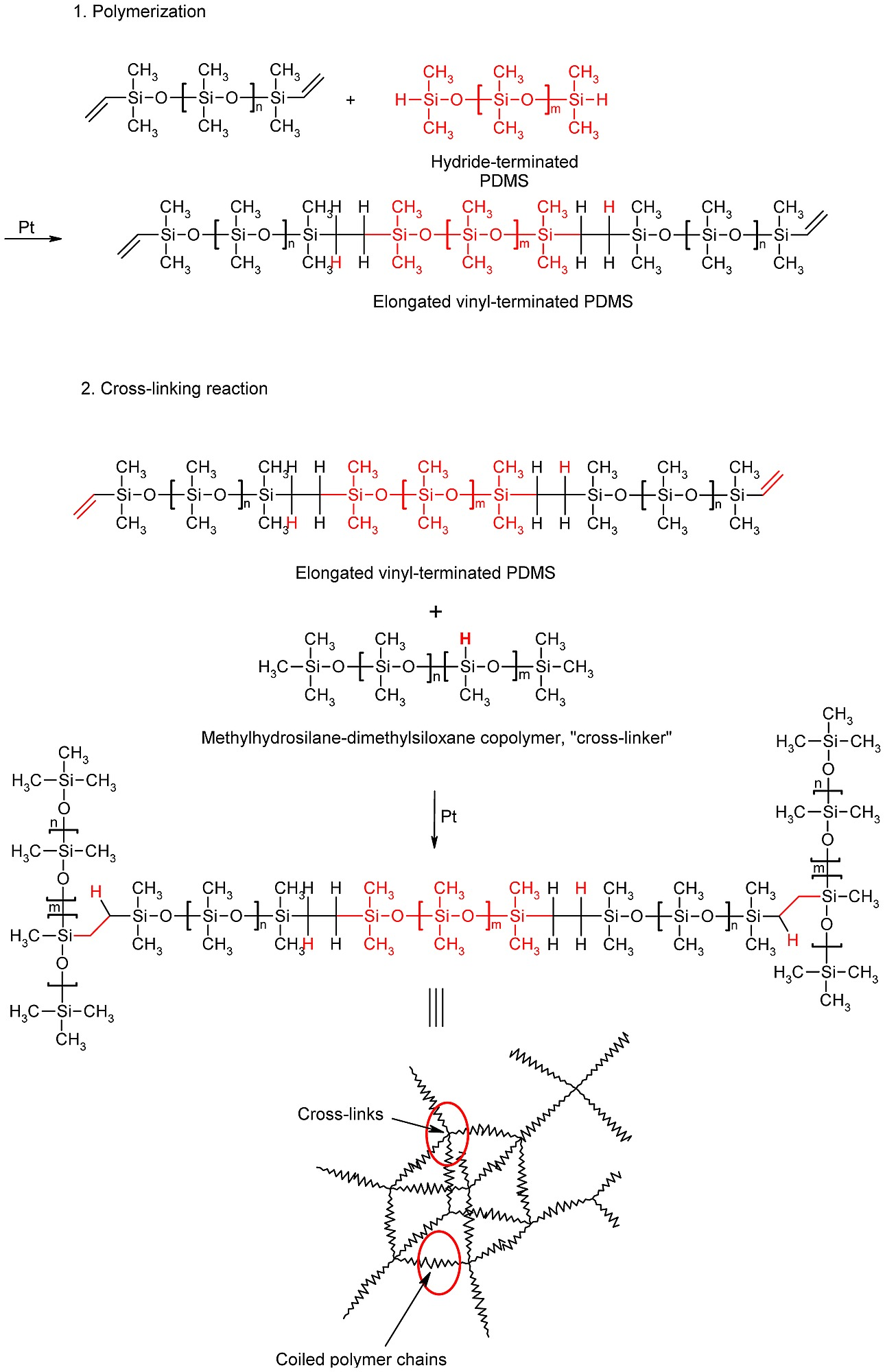 Synthesis of the silicone elastomer matrix