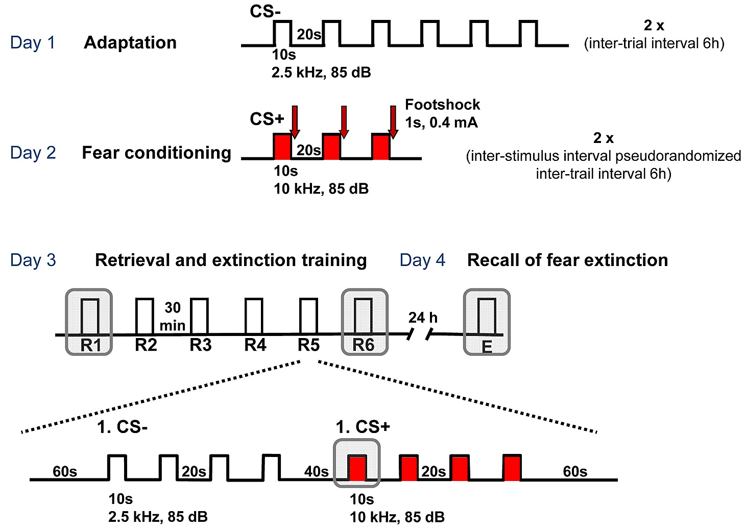 Directional Theta Coherence In Prefrontal Cortical To Amygdalo Circuit Training Prsentation Et Exemples D39entrainement Figshare