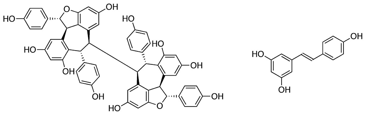 Structure Of Hopeaphenol And Resveratrol